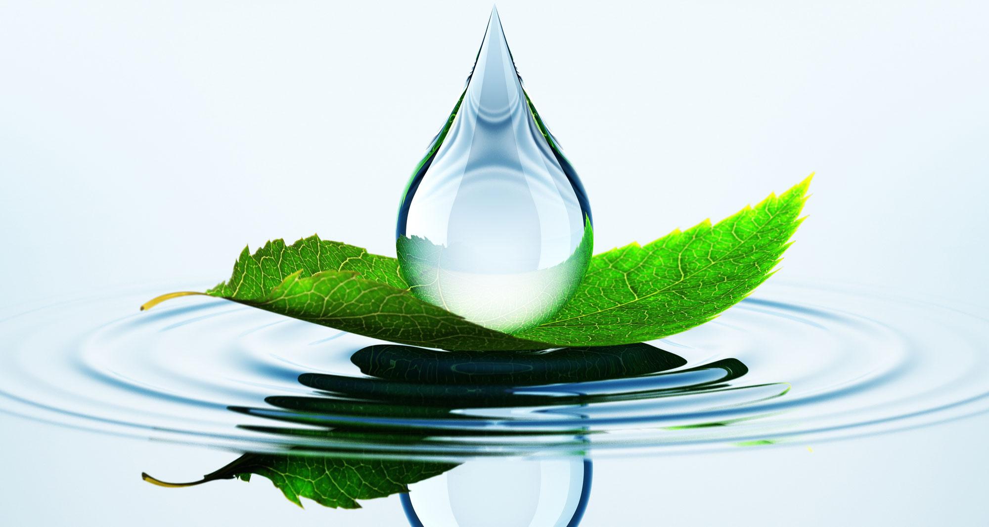 Biodegradable-Fluids